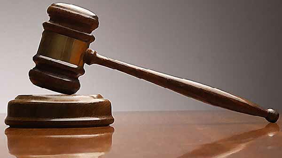 Expert Opinions & Legal Cases Picture